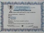 ArtMajeur Silver Award 2009