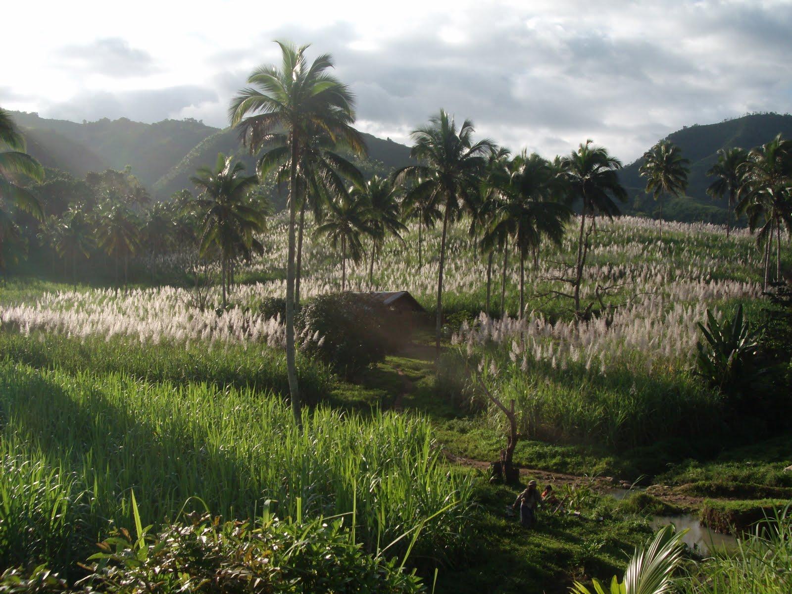 Twin Lakes Negros Oriental