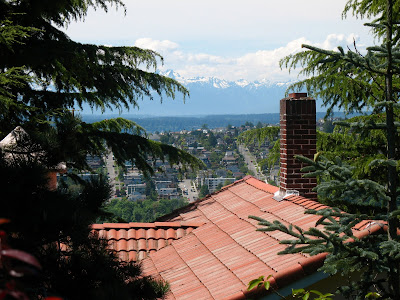 olympic mountains, view from west queen anne, seattle