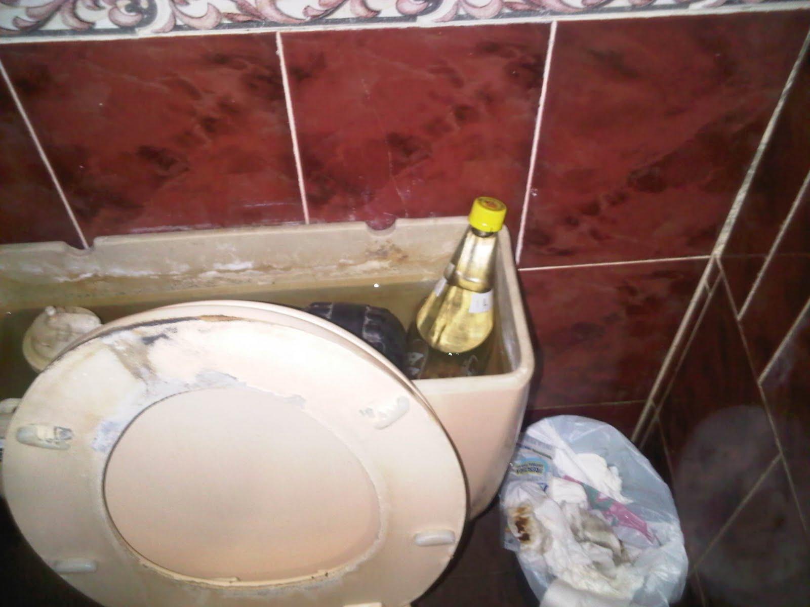 Imagenes De Los Baños Sucios:El temas mas Mierda de la red los baños mas sucios del mundo