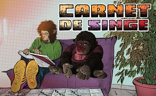 TCHITA Carnet de singe