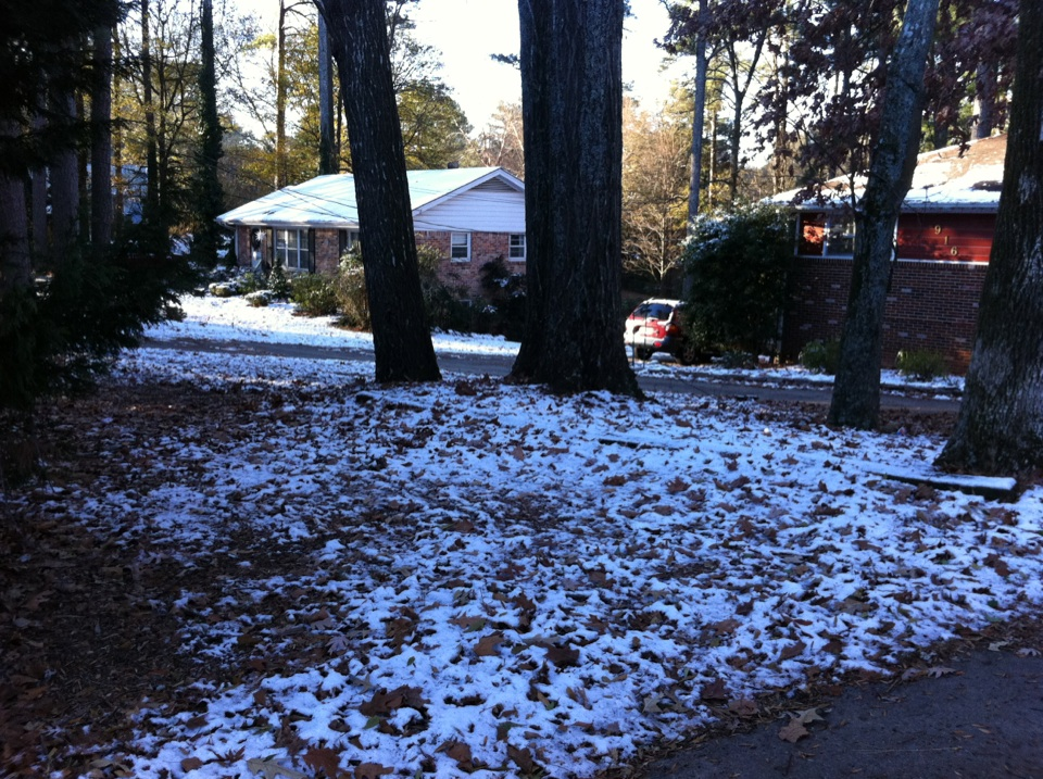 Here are some more pictures from the January 9th, 2010 Atlanta Snow Storm.