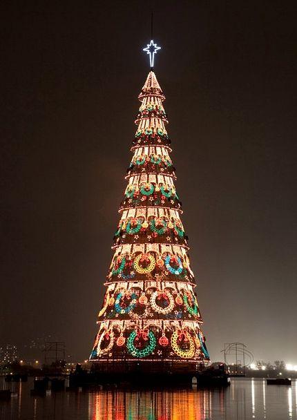 The Christmas tree Il_pi_alto_albero_di_natale_galleggiante