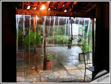 Chuva tropical - Tropische regen