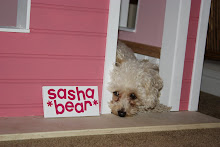 Sasha's New Dog House