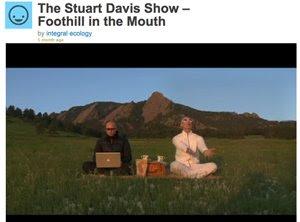 stuart davis show