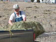 Steve unloading hay