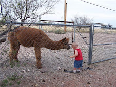 Nattional Alpaca Farm Days Sept. 26 and 27