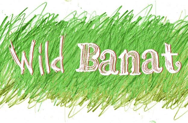 Wild-Banat