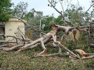 >Rangoon After the Storm – Diary from Burma