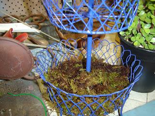 DIY Wire Planter | organizingmadefun.com