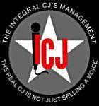 More ICJ Partners