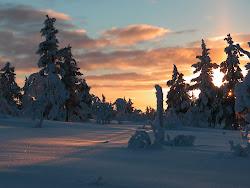 vackra vinter