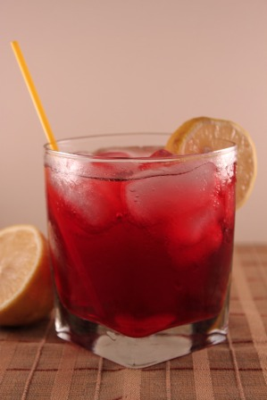 Cocktail Puppy: Hibiscus Tea with Citrus and Vodka