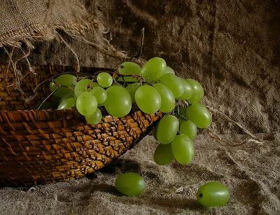 Виноград — полезный, вкусный и опасный