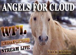 [Angels+for+Cloud+BNR+250x181.jpg]