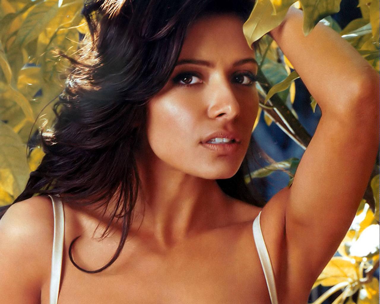 http://2.bp.blogspot.com/__RWIjMMpo1Y/TVATky_LmbI/AAAAAAAAAd8/9hNft9ItodE/s1600/Sarah+Shahi.jpg