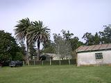 Establecimiento San Juan - Lumb - San Cayetano - Buenos Aires