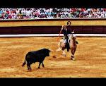 Corrida de Rejones.Fiestas de San Pedro.Burgos