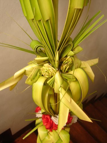 defining beauty: happy palm sunday!