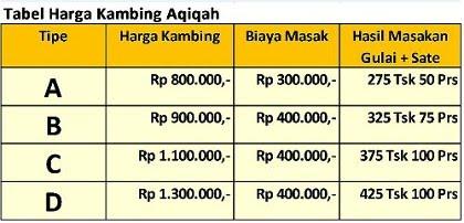 kambing aqiqah
