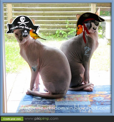 Dragonheart and Merlin as Pirates