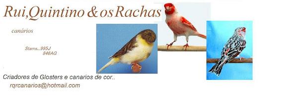 Rui, Quintino & os Rachas canarios