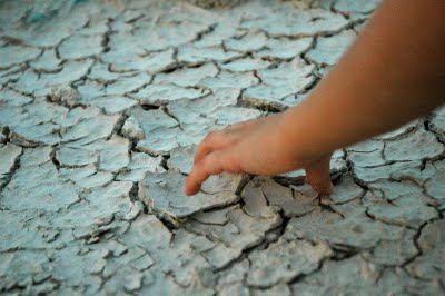 Picture of Kaia's hand touching dried desert