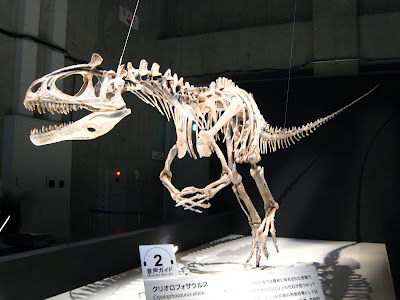 dinochick blogs cryolophosaurus in japan