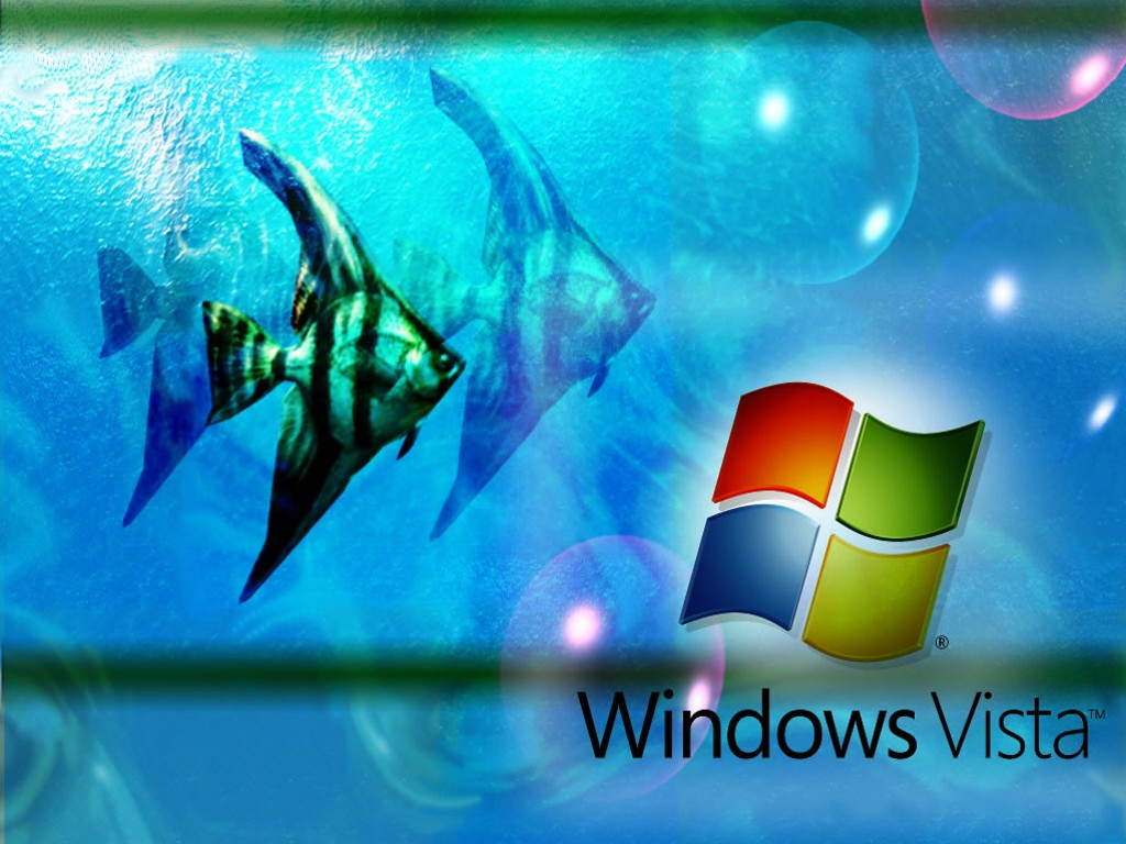 How To Installing Windows Vista