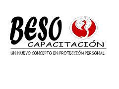 BESO capacitacion