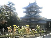 岩崎城と菊