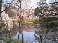森林公園正門横の池