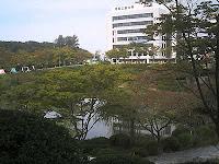 愛知工業大学内の池