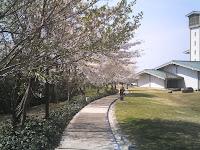 本館から南館への小道