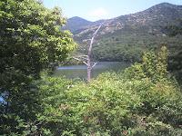 山小屋から見る築水池