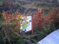 ハナミズキの紅葉に囲まれた案内板