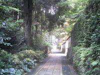 龍潭寺への脇道