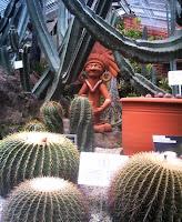 中南米産植物の万人