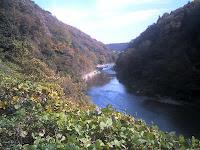 庄内川(玉野川)