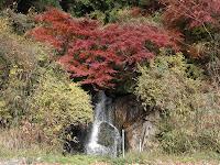 名なしの滝