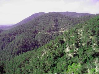 La Vall de Guanta