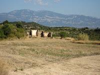 Camps de Cal Criba