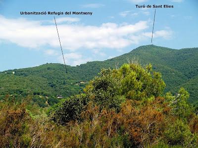 Travessant la urbanització dels Refugis del Montseny