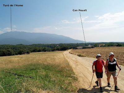 El Montseny des dels camps de Can Peualt