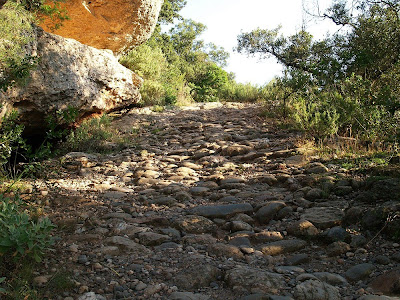 Camí ramader dels Graons de Mura