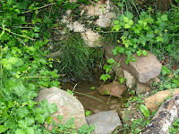 Font del Regàs, naixement del riu Congost