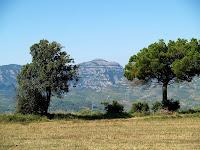 El Montcau des de el Camp de Bonell