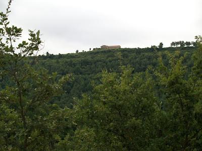 Puigmartre des de la Bassa de Montfred