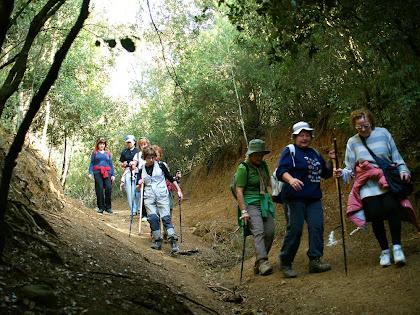 Baixant cap al torrent al Bosc de Can Bruguera